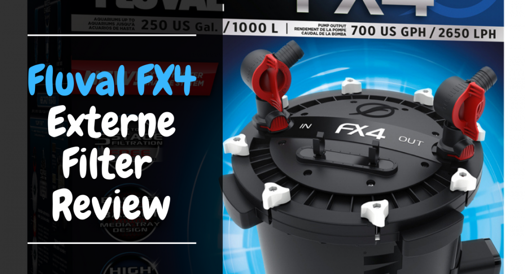 Fluval FX4 Externe filter Review